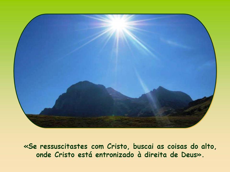 É o mundo ao qual pertence Jesus.
