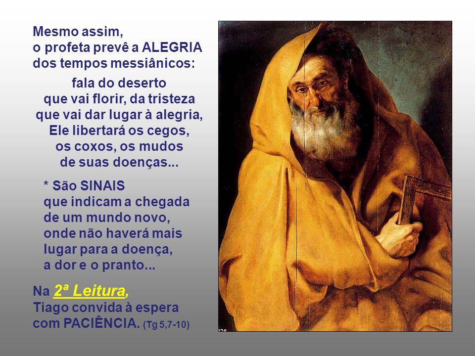 Mesmo assim, o profeta prevê a ALEGRIA dos tempos messiânicos: fala do deserto que vai florir, da tristeza que vai dar lugar à alegria, Ele libertará os cegos, os coxos, os mudos de suas doenças...
