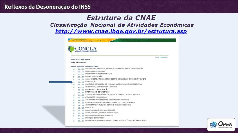 Estrutura da CNAE Classificação Nacional de Atividades Econômicas http://www.cnae.ibge.gov.br/estrutura.asp