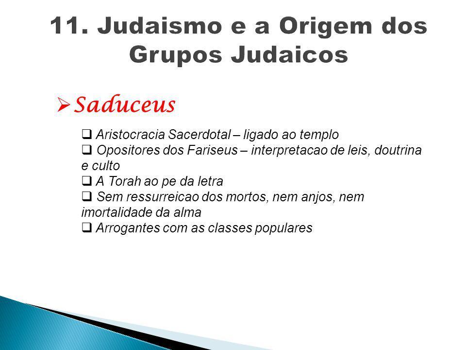  Saduceus  Aristocracia Sacerdotal – ligado ao templo  Opositores dos Fariseus – interpretacao de leis, doutrina e culto  A Torah ao pe da letra 
