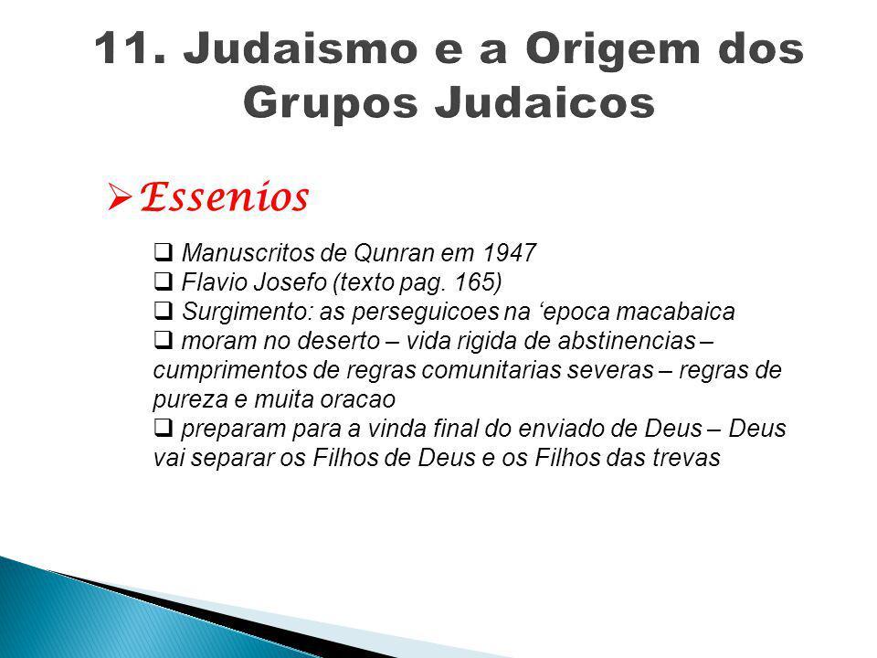  Essenios  Manuscritos de Qunran em 1947  Flavio Josefo (texto pag. 165)  Surgimento: as perseguicoes na 'epoca macabaica  moram no deserto – vid