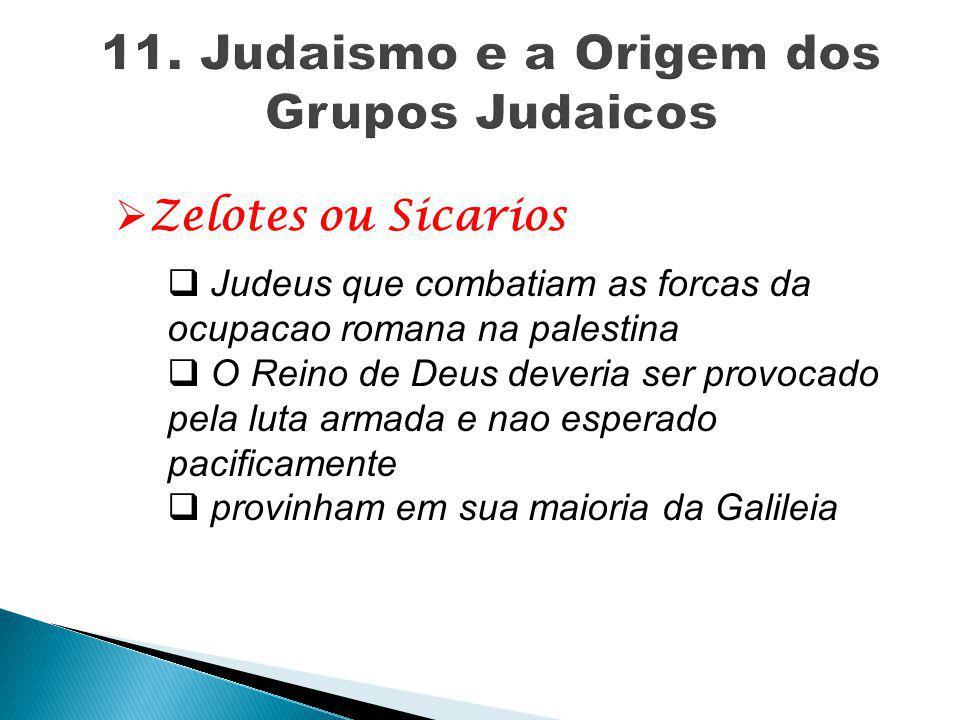  Zelotes ou Sicarios  Judeus que combatiam as forcas da ocupacao romana na palestina  O Reino de Deus deveria ser provocado pela luta armada e nao