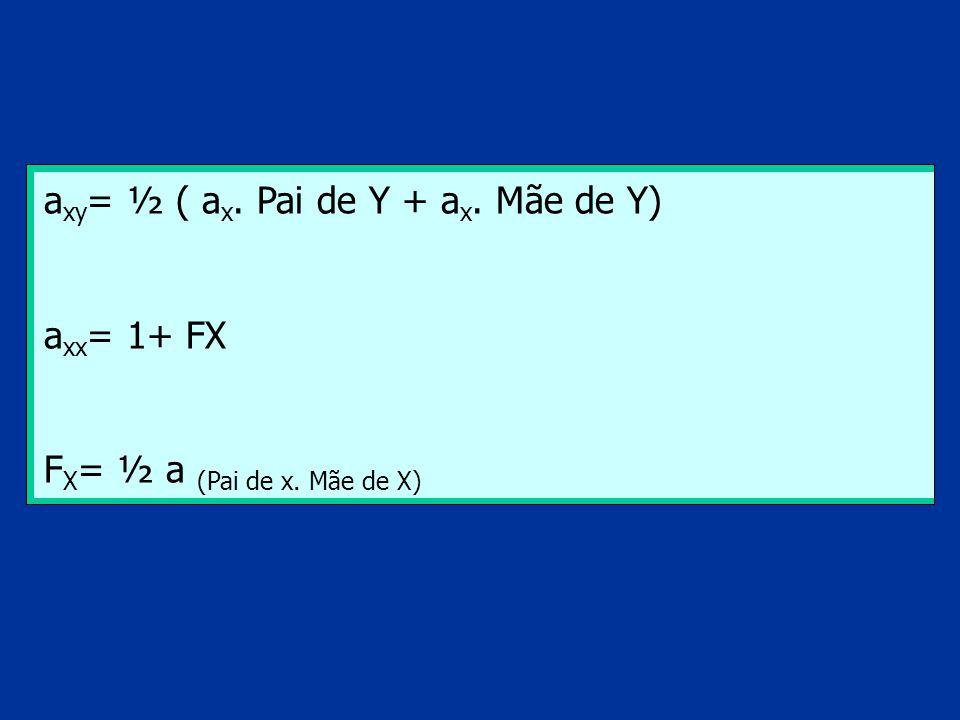 a xy = ½ ( a x. Pai de Y + a x. Mãe de Y) a xx = 1+ FX F X = ½ a (Pai de x. Mãe de X)