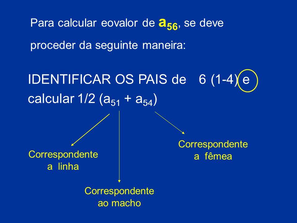 IDENTIFICAR OS PAIS de 6 (1-4) e calcular 1/2 (a 51 + a 54 ) Correspondente a linha Correspondente ao macho Correspondente a fêmea Para calcular eovalor de a 56, se deve proceder da seguinte maneira: