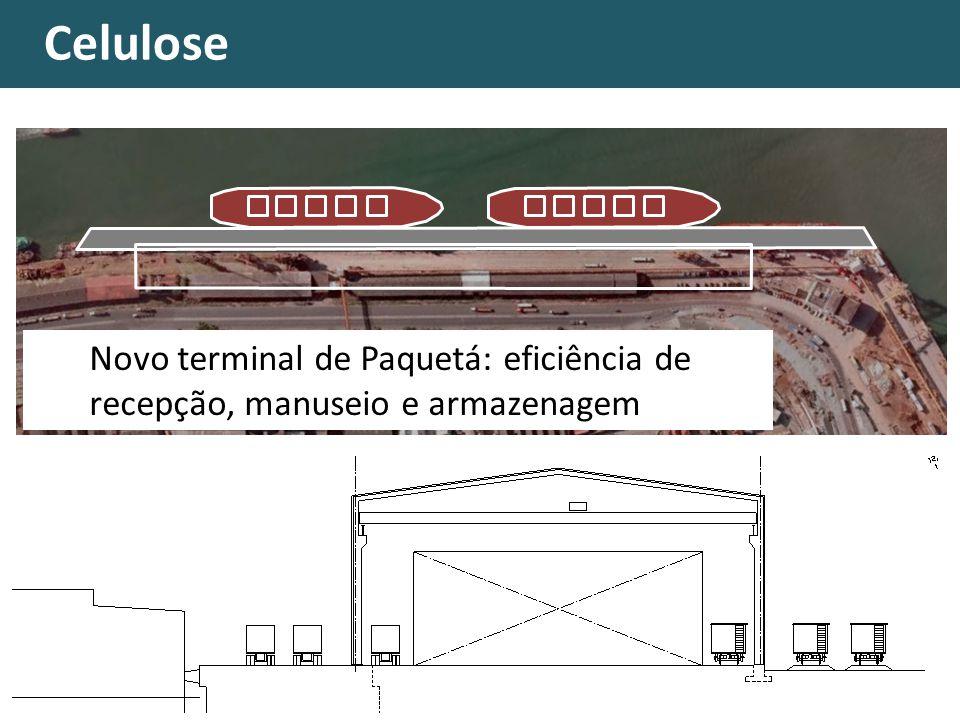 Celulose Novo terminal de Paquetá: eficiência de recepção, manuseio e armazenagem
