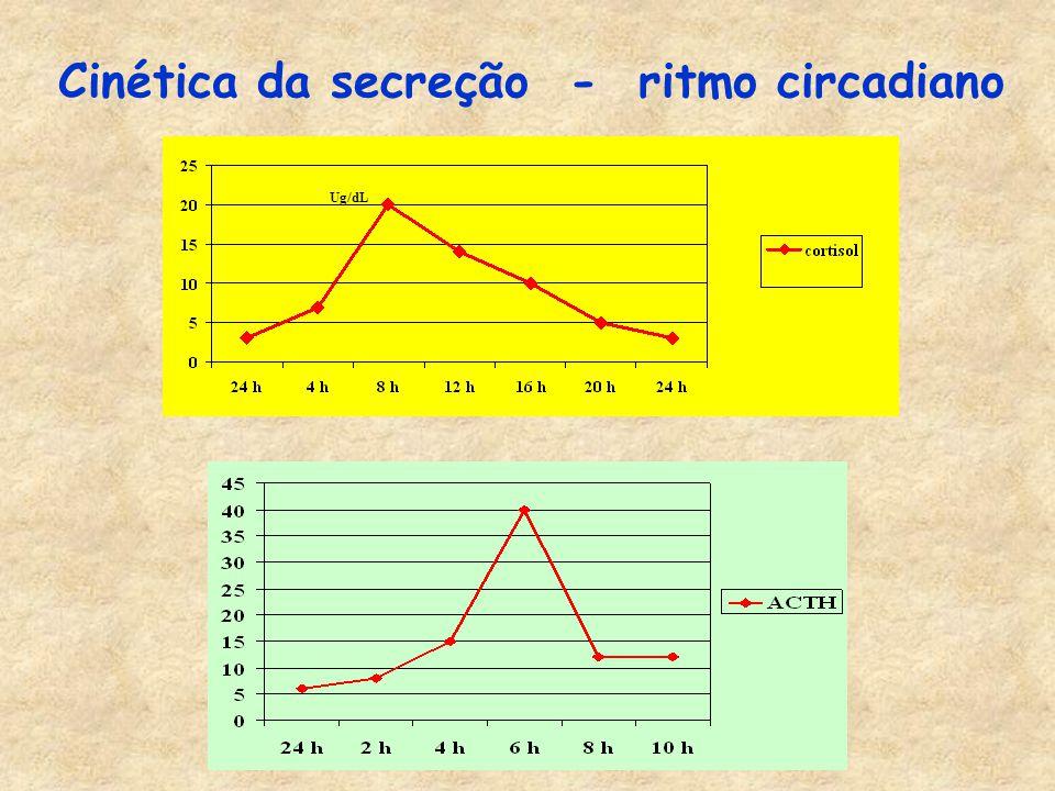 Cinética da secreção - ritmo circadiano Ug/dL