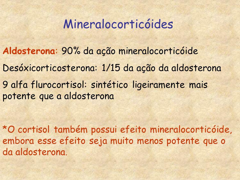 Mineralocorticóides Aldosterona: 90% da ação mineralocorticóide Desóxicorticosterona: 1/15 da ação da aldosterona 9 alfa flurocortisol: sintético ligeiramente mais potente que a aldosterona *O cortisol também possui efeito mineralocorticóide, embora esse efeito seja muito menos potente que o da aldosterona.