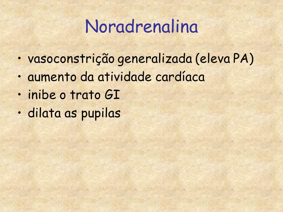 Noradrenalina vasoconstrição generalizada (eleva PA) aumento da atividade cardíaca inibe o trato GI dilata as pupilas