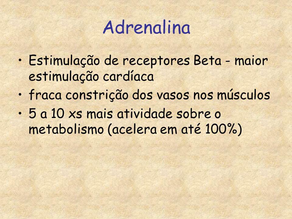 Adrenalina Estimulação de receptores Beta - maior estimulação cardíaca fraca constrição dos vasos nos músculos 5 a 10 xs mais atividade sobre o metabolismo (acelera em até 100%)
