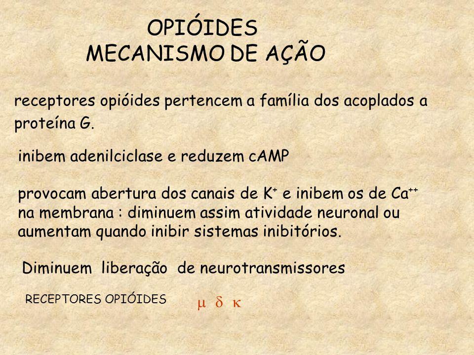 OPIÓIDES MECANISMO DE AÇÃO Diminuem liberação de neurotransmissores RECEPTORES OPIÓIDES    receptores opióides pertencem a família dos acoplados a proteína G.