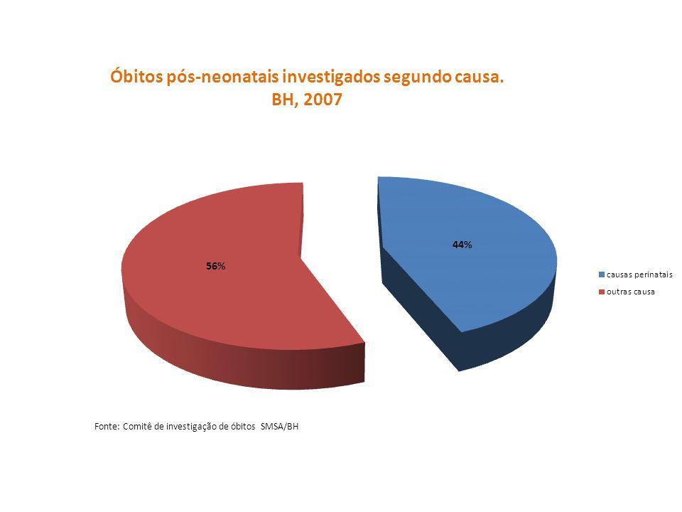 Óbitos pós-neonatais investigados segundo causa. BH, 2007