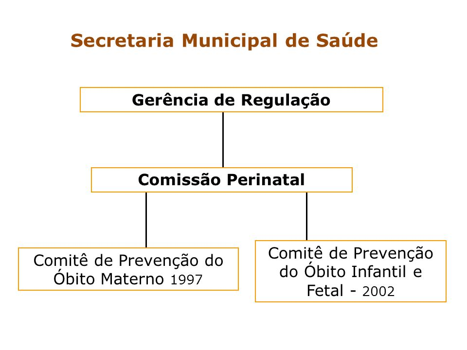 Comitê de Prevenção do Óbito Materno 1997 Comissão Perinatal Gerência de Regulação Comitê de Prevenção do Óbito Infantil e Fetal - 2002 Secretaria Mun