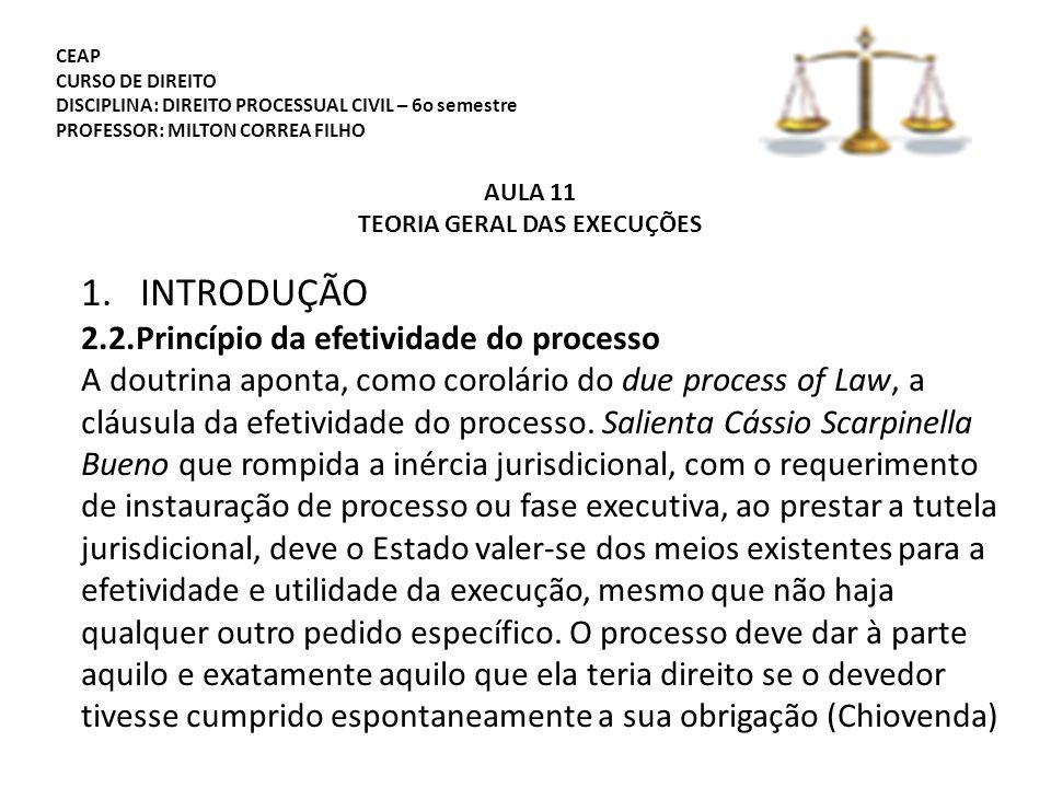 CEAP CURSO DE DIREITO DISCIPLINA: DIREITO PROCESSUAL CIVIL – 6o semestre PROFESSOR: MILTON CORREA FILHO AULA 11 TEORIA GERAL DAS EXECUÇÕES 1.INTRODUÇÃO 2.2.Princípio da efetividade do processo A doutrina aponta, como corolário do due process of Law, a cláusula da efetividade do processo.