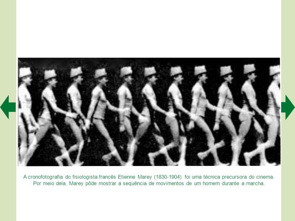 Esquema do reflexo flexor de retirada da perna. Os aferentes cutâneos do pé são ativados por um estímulo nociceptivo. Na medula, terminam em interneur