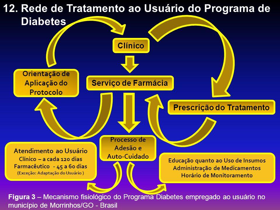 12. Rede de Tratamento ao Usuário do Programa de Diabetes Serviço de Farmácia Clínico Figura 3 – Mecanismo fisiológico do Programa Diabetes empregado
