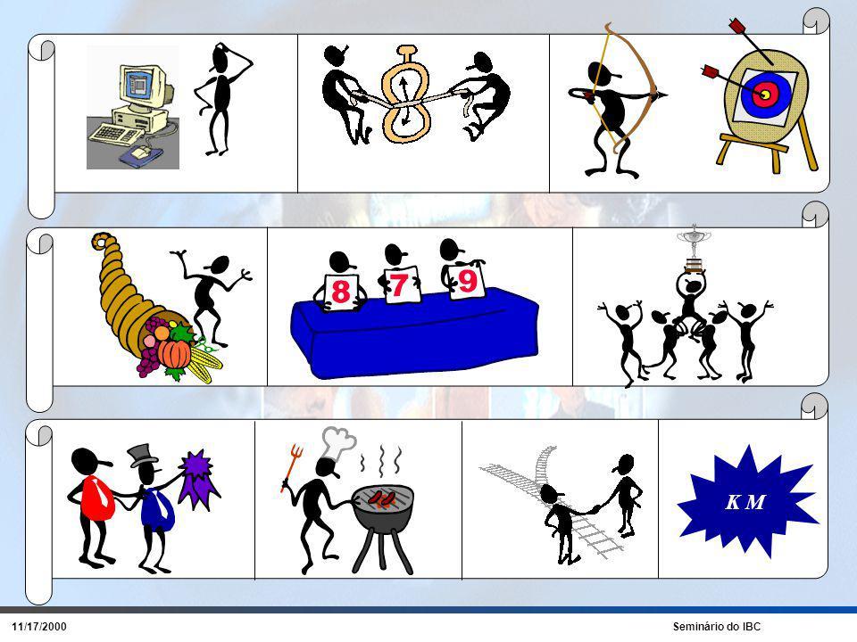 11/17/2000 Seminário do IBC Um desenvolvimento gradual As empresas gostariam de desenvolver suas habilidades de IN rapidamente mas...