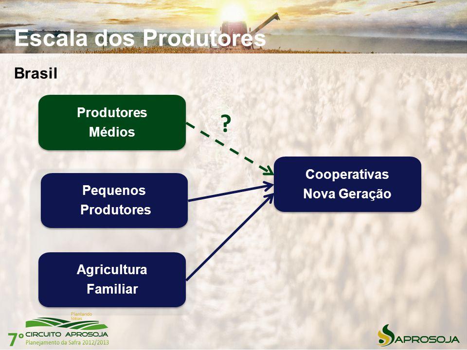 Escala dos Produtores Brasil Cooperativas Nova Geração Cooperativas Nova Geração Pequenos Produtores Pequenos Produtores Médios Produtores Médios Agri