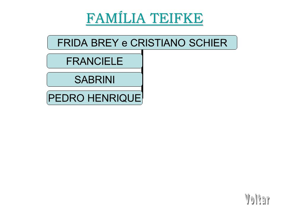 FRIDA BREY e CRISTIANO SCHIER FRANCIELE SABRINI PEDRO HENRIQUE FAMÍLIA TEIFKE FAMÍLIA TEIFKE