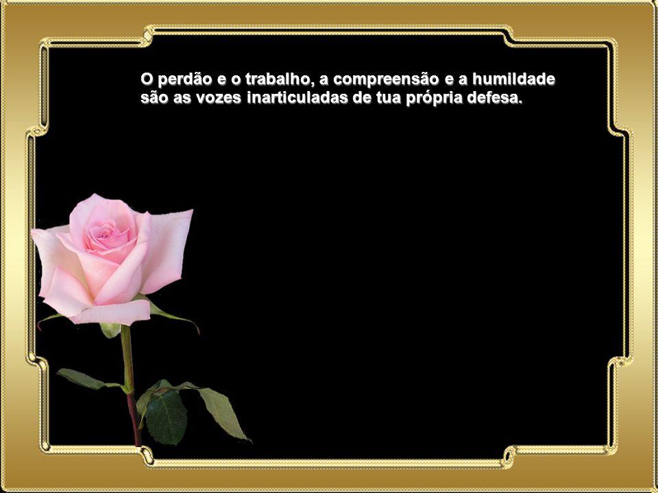 02.05.11 O perdão e o trabalho, a compreensão e a humildade são as vozes inarticuladas de tua própria defesa.