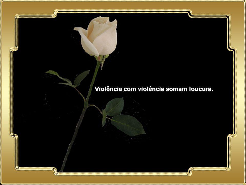 02.05.11 Violência com violência somam loucura.