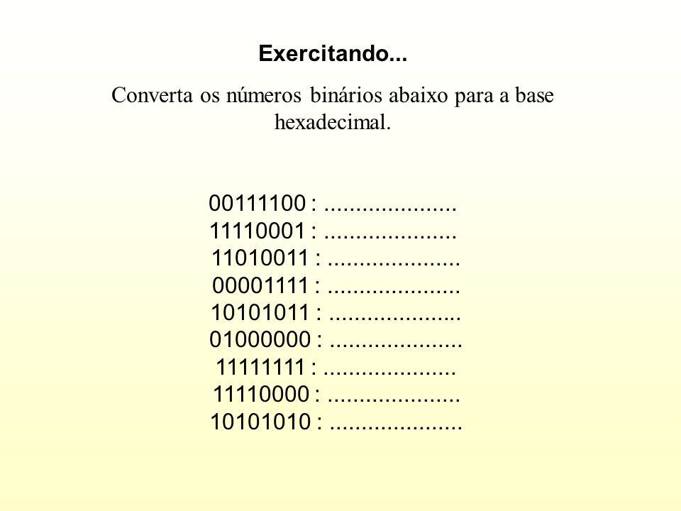 Binário : 1 1 0 1 0 1 1 0 Hexadecimal : D 6 Decimal : 214 0110 em binário eqüivale a 6 em decimal e 6 em hexadecimal. 1101 em binário eqüivale a 13 em