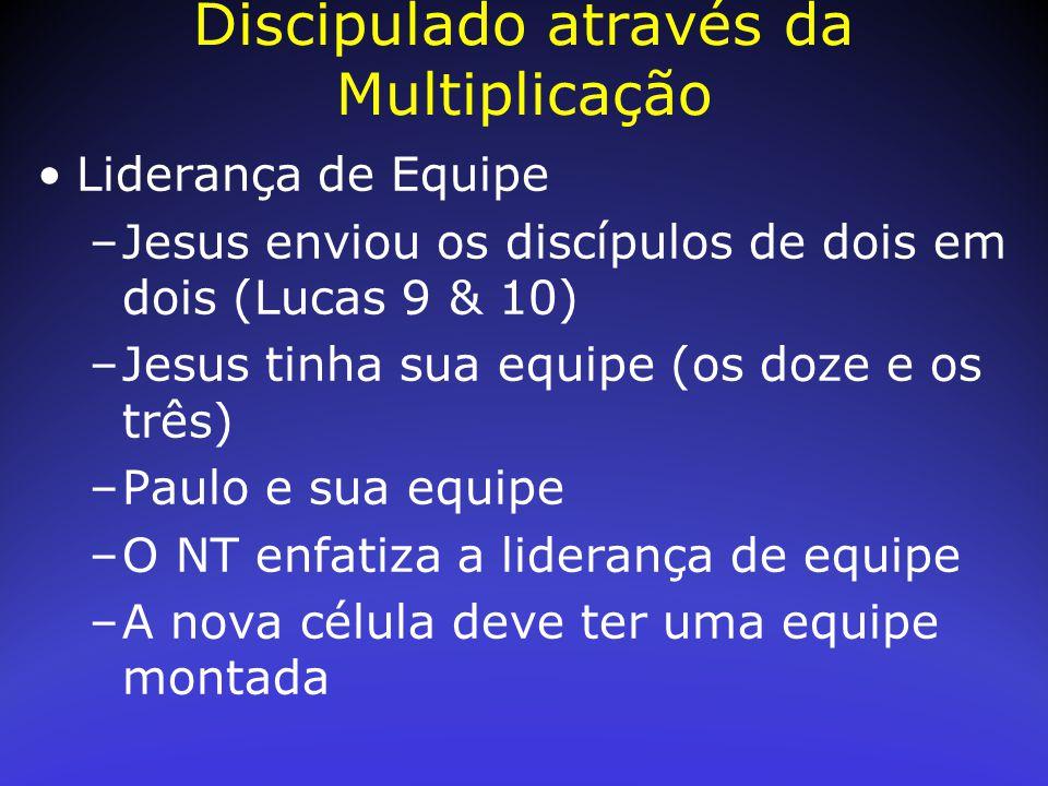 Liderança de Equipe –Jesus enviou os discípulos de dois em dois (Lucas 9 & 10) –Jesus tinha sua equipe (os doze e os três) –Paulo e sua equipe –O NT e