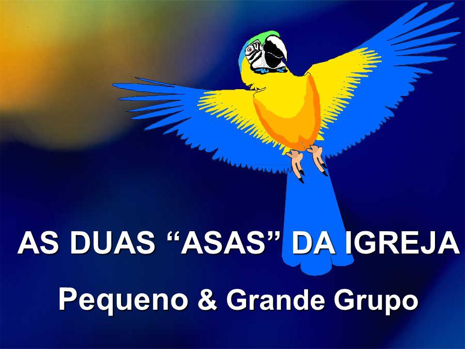 """AS DUAS """"ASAS"""" DA IGREJA Pequeno & Grande Grupo"""