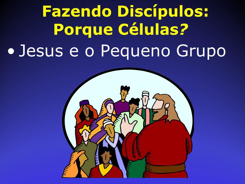 Fazendo Discípulos: Porque Células? Jesus e o Pequeno Grupo