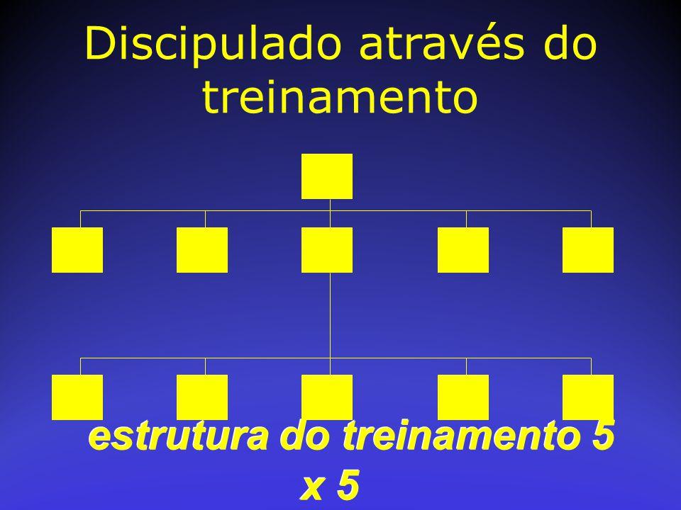 estrutura do treinamento 5 x 5 Discipulado através do treinamento