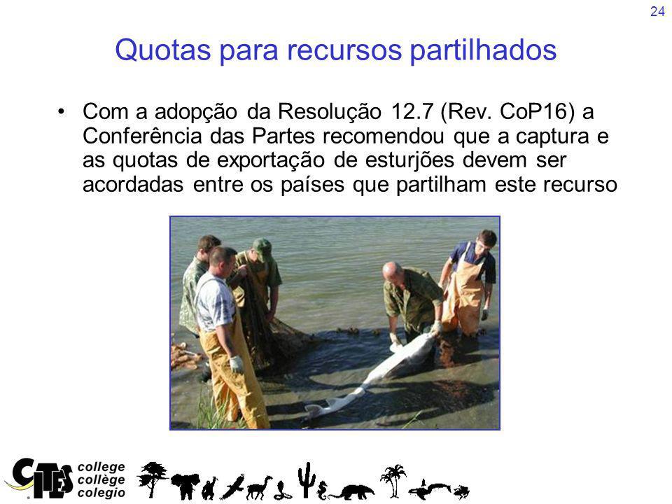 24 Quotas para recursos partilhados Com a adopção da Resolução 12.7 (Rev.