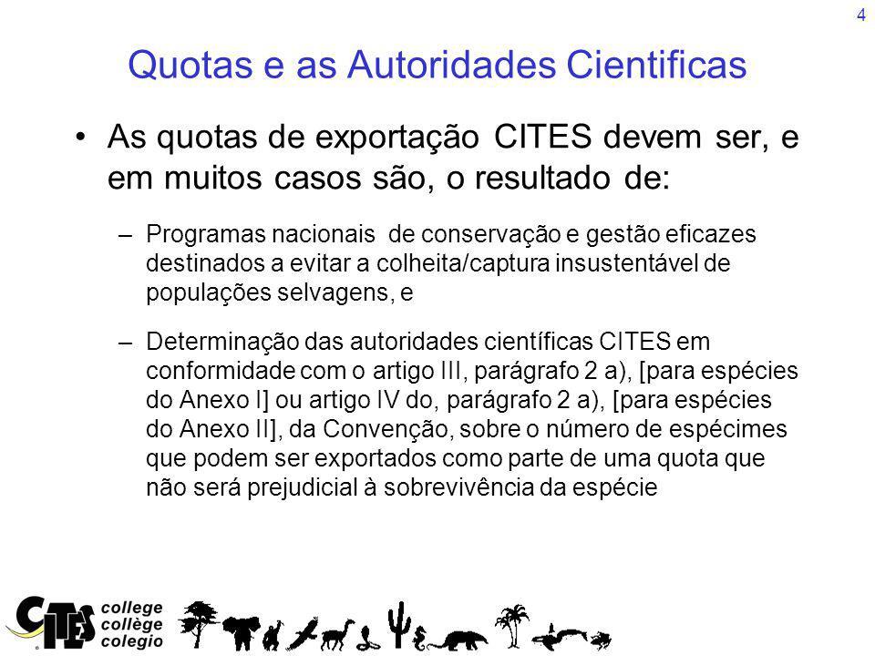 4 Quotas e as Autoridades Cientificas As quotas de exportação CITES devem ser, e em muitos casos são, o resultado de: –Programas nacionais de conservação e gestão eficazes destinados a evitar a colheita/captura insustentável de populações selvagens, e –Determinação das autoridades científicas CITES em conformidade com o artigo III, parágrafo 2 a), [para espécies do Anexo I] ou artigo IV do, parágrafo 2 a), [para espécies do Anexo II], da Convenção, sobre o número de espécimes que podem ser exportados como parte de uma quota que não será prejudicial à sobrevivência da espécie