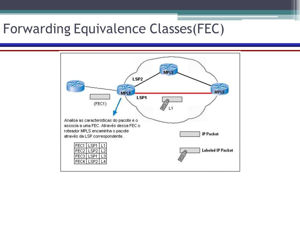 Forwarding Equivalence Classes(FEC)
