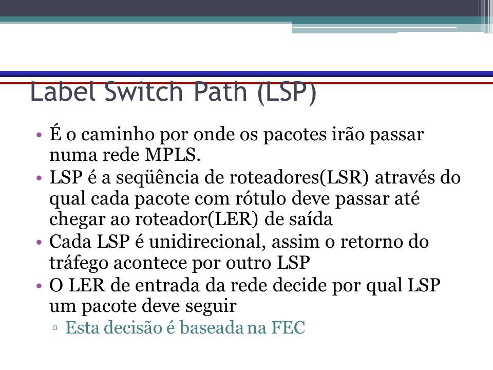 Label Switch Path (LSP) É o caminho por onde os pacotes irão passar numa rede MPLS. LSP é a seqüência de roteadores(LSR) através do qual cada pacote c