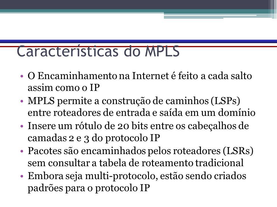 Características do MPLS O Encaminhamento na Internet é feito a cada salto assim como o IP MPLS permite a construção de caminhos (LSPs) entre roteadore