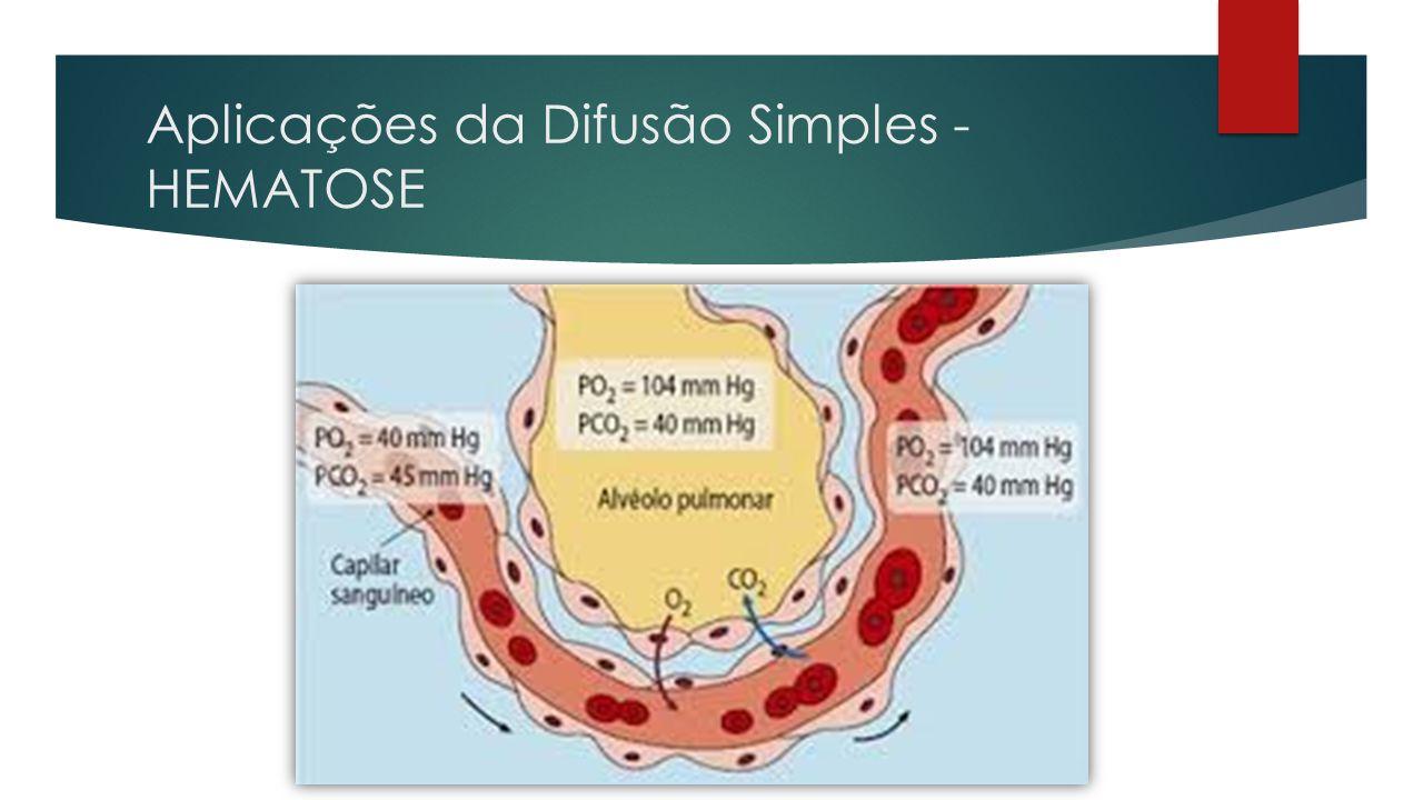 Velocidade de Difusão  A velocidade da passagem de substâncias através da membrana é DIRETAMENTE PROPORCIONAL ao gradiente de concentração