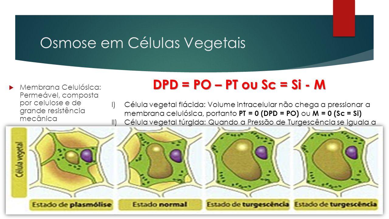 Osmose em Células Vegetais  Membrana Celulósica: Permeável, composta por celulose e de grande resistência mecânica  Membrana Plasmática: Composição