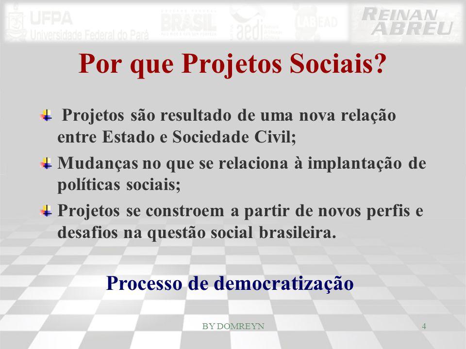 Processo de democratização \ Descentralização do Estado; \ Participação da Sociedade Civil organizada; \ Novas fronteiras entre público e privado; \ Políticas sociais mais complexas; \ Redefinição de estratégias de articulação destas políticas.