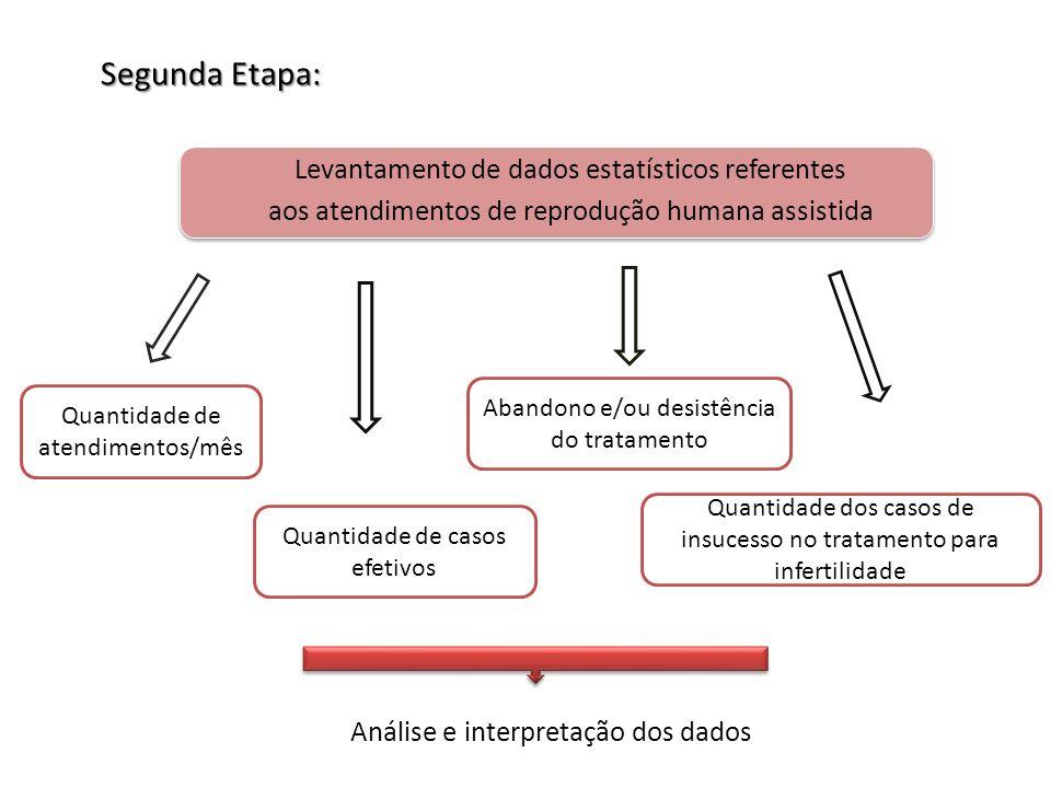 Segunda Etapa: Levantamento de dados estatísticos referentes aos atendimentos de reprodução humana assistida Quantidade de atendimentos/mês Quantidade de casos efetivos Abandono e/ou desistência do tratamento Quantidade dos casos de insucesso no tratamento para infertilidade Análise e interpretação dos dados