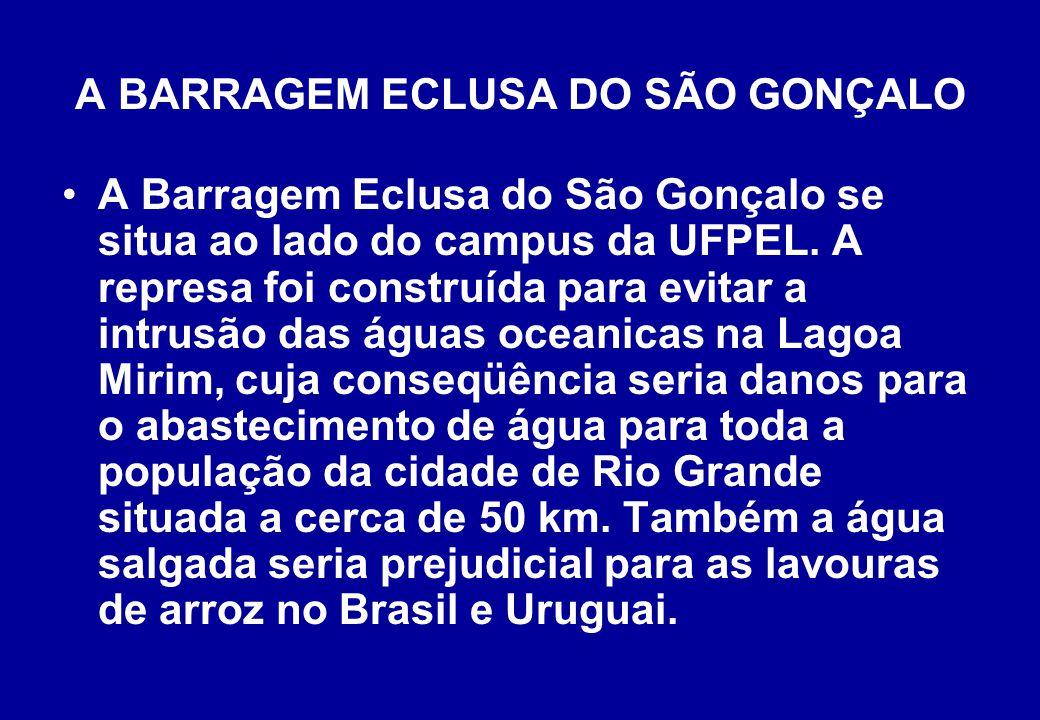 A BARRAGEM ECLUSA DO SÃO GONÇALO A Barragem Eclusa do São Gonçalo se situa ao lado do campus da UFPEL.