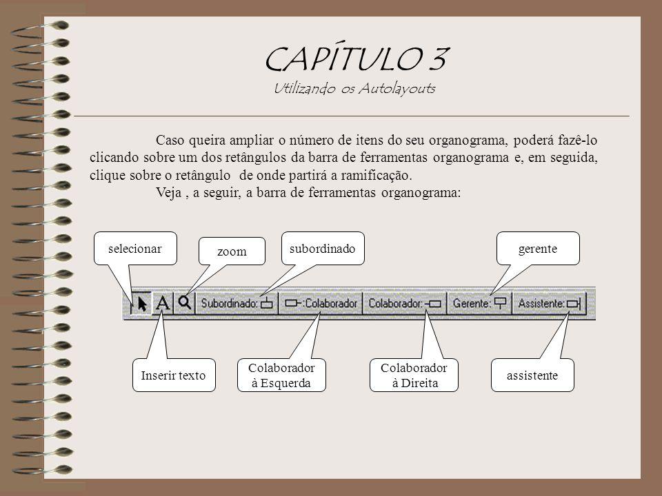 CAPÍTULO 3 Utilizando os Autolayouts Caso queira ampliar o número de itens do seu organograma, poderá fazê-lo clicando sobre um dos retângulos da barr