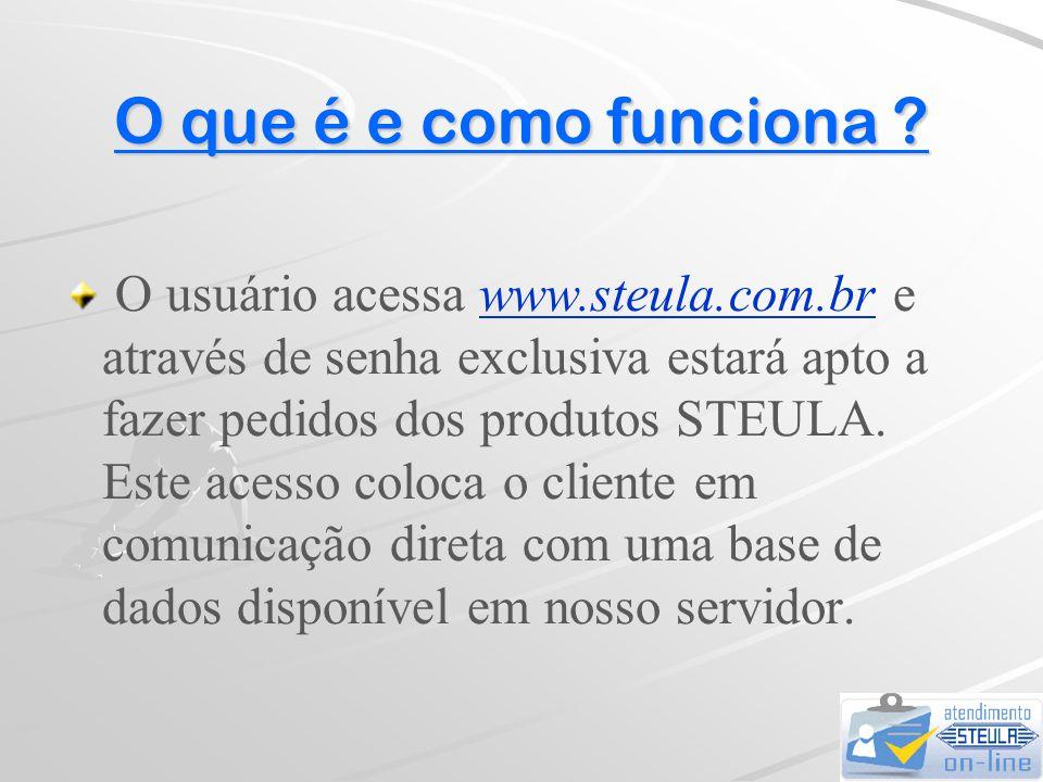 Instruções para operação do STEULA-ON-LINE  Agora você pode acompanhar seus pedidos...