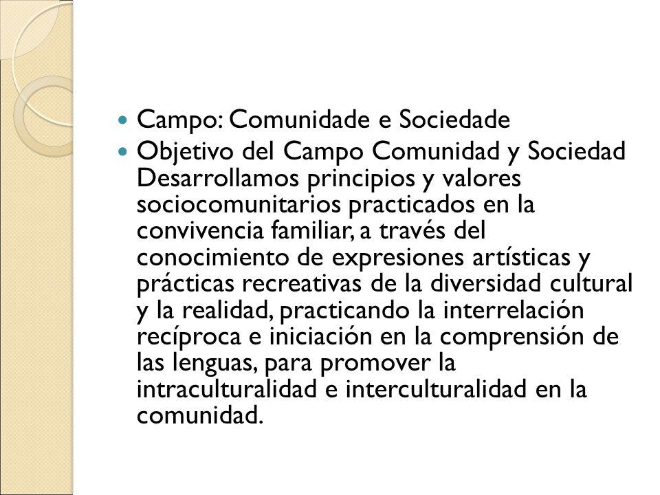 Campo: Comunidade e Sociedade Objetivo del Campo Comunidad y Sociedad Desarrollamos principios y valores sociocomunitarios practicados en la convivenc