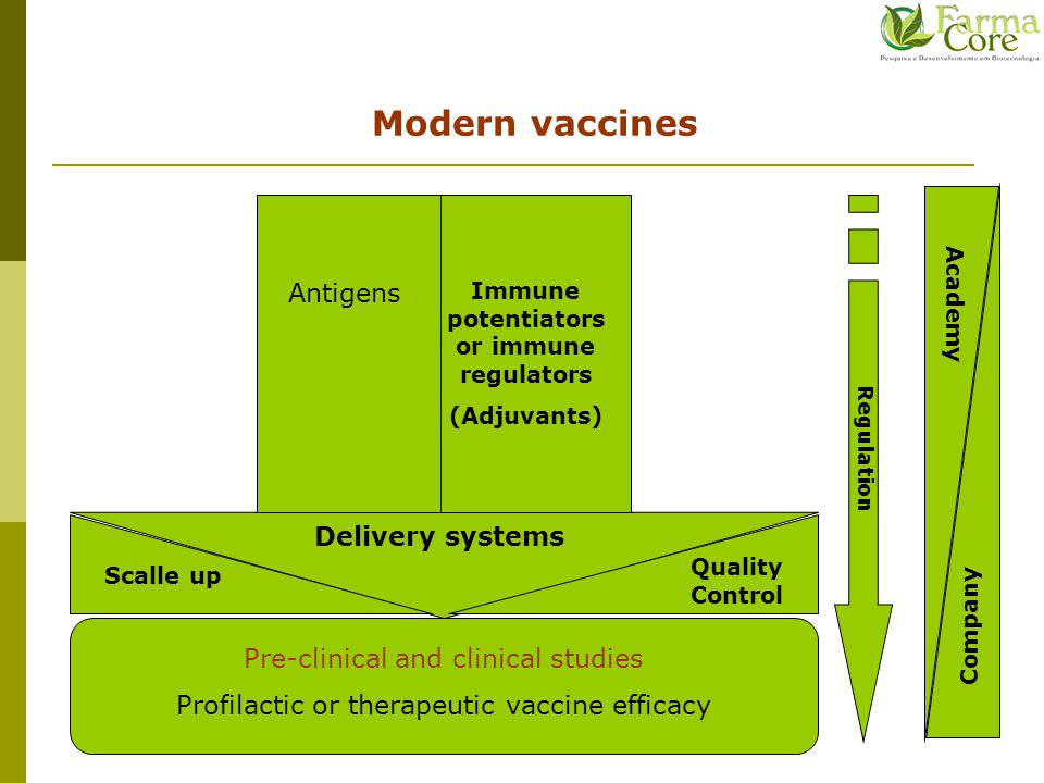 Modern vaccines Antigens Pre-clinical and clinical studies Profilactic or therapeutic vaccine efficacy Regulation Academy Company Scalle up Delivery systems Immune potentiators or immune regulators (Adjuvants) Quality Control NBR ISO IEC 17025