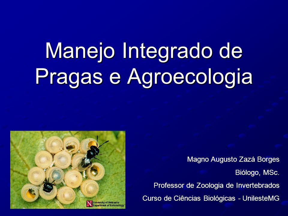 Manejo Integrado de Pragas e Agroecologia Magno Augusto Zazá Borges Biólogo, MSc. Professor de Zoologia de Invertebrados Curso de Ciências Biológicas