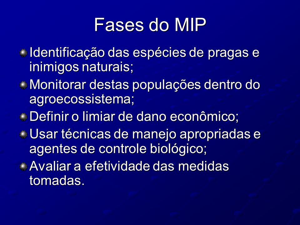 Fases do MIP Identificação das espécies de pragas e inimigos naturais; Monitorar destas populações dentro do agroecossistema; Definir o limiar de dano