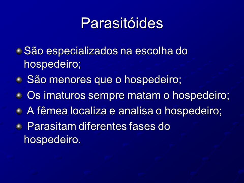 Parasitóides São especializados na escolha do hospedeiro; São menores que o hospedeiro; São menores que o hospedeiro; Os imaturos sempre matam o hospe