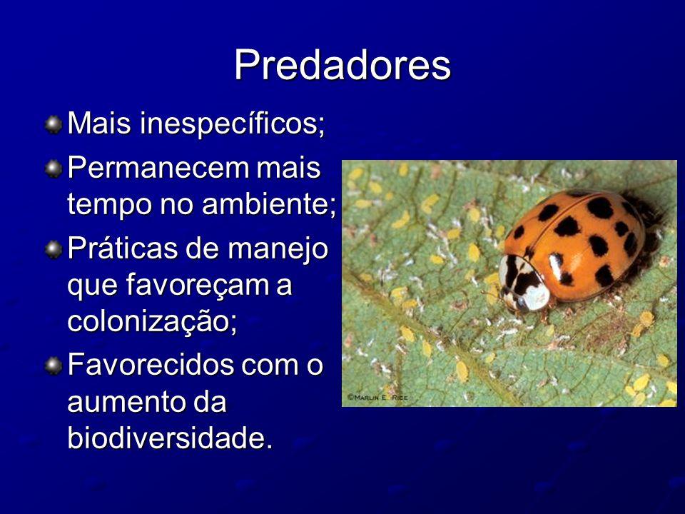 Predadores Mais inespecíficos; Permanecem mais tempo no ambiente; Práticas de manejo que favoreçam a colonização; Favorecidos com o aumento da biodive