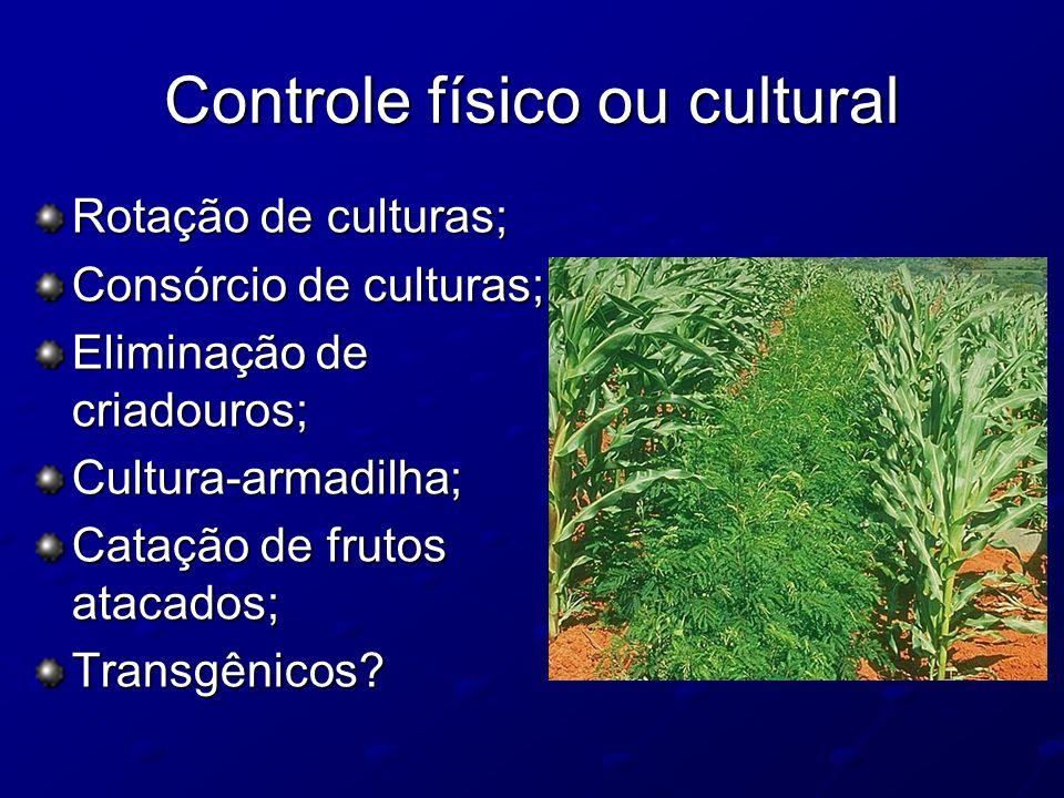 Controle físico ou cultural Rotação de culturas; Consórcio de culturas; Eliminação de criadouros; Cultura-armadilha; Catação de frutos atacados; Trans
