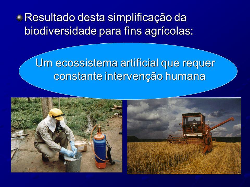 Resultado desta simplificação da biodiversidade para fins agrícolas: Um ecossistema artificial que requer constante intervenção humana