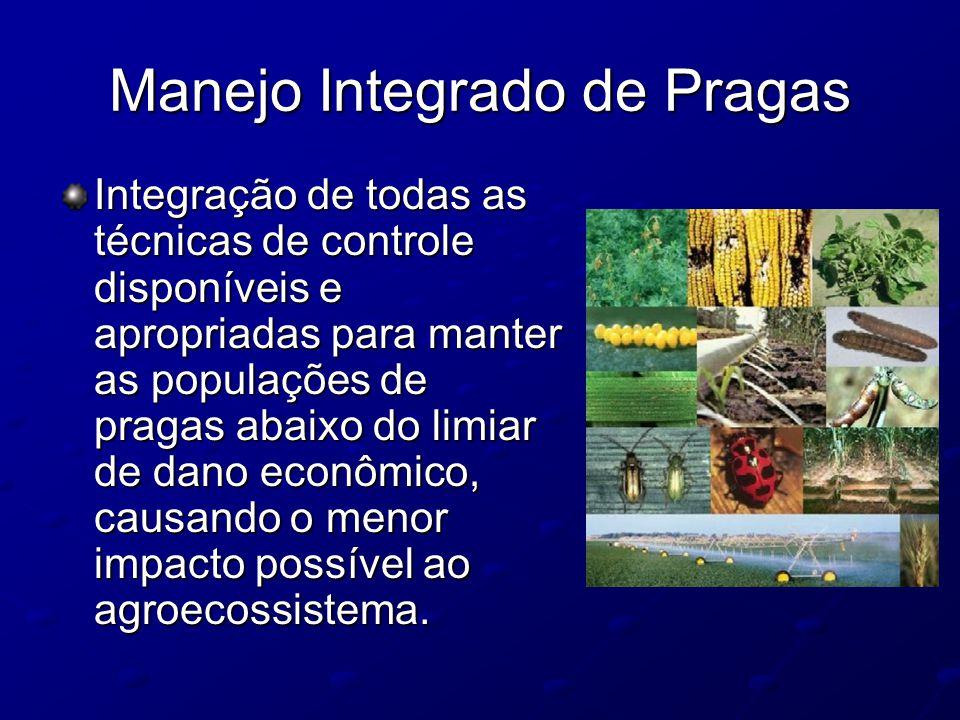 Manejo Integrado de Pragas Integração de todas as técnicas de controle disponíveis e apropriadas para manter as populações de pragas abaixo do limiar